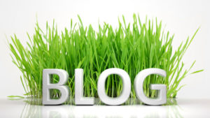 blog creation and content creation